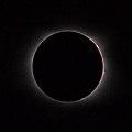 2017 Great American Eclipse Chromosphere (43710526991).jpg