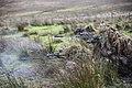 34 Squadron undertake Live Fire Tactical Training at Otterburn Camp. MOD 45159230.jpg