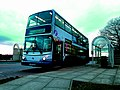 61 Bus.jpg