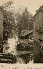 La Semence à Charolles, en 1904