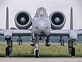 81-952-SP, A-10 Warthog, AFB Volkel (NL), USAF P1010264 (50851979733).jpg