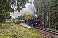 99 7239-9, Germany, Saxony-Anhalt, Elend - Benneckenstein stretch (Trainpix 216812).jpg