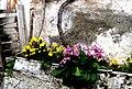 A@a colors palehori village cyprus - panoramio.jpg