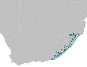 Maputaland-Pondoland bushland and thickets - Maputaland-Pondoland bushland and thickets ecoregion