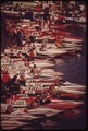 AT THE START OF ANNUAL OUTBOARD WORLD CHAMPIONSHIP BOAT RACE ON LAKE HAVASU NEAR PARKER - NARA - 549085.tif