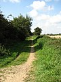 A section of Marriott's Way leading SW - geograph.org.uk - 553544.jpg