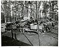 A small group of German motor transport vehicles captured during World War I.jpg