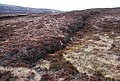 Abandoned peat cutting, Rowamo - geograph.org.uk - 1226488.jpg