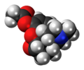 Acetylmorphone molecule spacefill.png