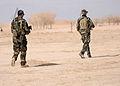 Afghan and coalition forces patrol western Kandahar village DVIDS545426.jpg