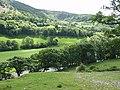 Afon Dyfrdwy from the Llangollen Canal - geograph.org.uk - 644223.jpg