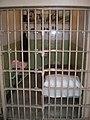 Alcatraz Cells 5.JPG