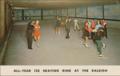 All-year ice skating rink at the Raleigh hotel 1964 ny (8149889541).png