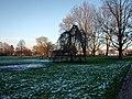Alsterpark Baumbestand Harvestehude (1).jpg