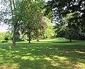 Alte Bäume im Schlosspark in Eschwege - panoramio.jpg