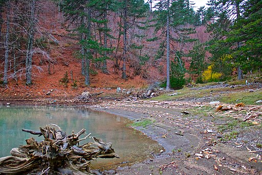 Amos Springs Lake Fall