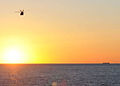 An MH-60R Seahawk helicopter assigned to Helicopter Maritime Strike Squadron (HSM) 70 and the aircraft carrier USS George H.W. Bush (CVN 77) flies over the Atlantic Ocean at sunrise Oct. 17, 2010 101017-N-IX325-048.jpg