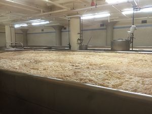 Anchor Brewing Company - Open-top fermentation tanks are used