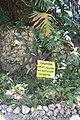 Andromeda Botanical Gardens 24.jpg