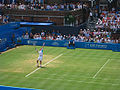 Andy Murray Serve Queens.jpg
