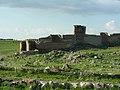 Ani, Stadtmauer (25530475257).jpg
