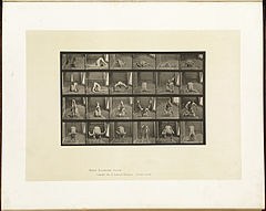 Animal locomotion. Plate 511 (Boston Public Library).jpg