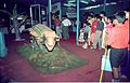 Ankylosaurus - Dinosaurs Alive Exhibition - Science City - Calcutta 1995-June-July 490.JPG