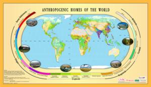 Anthropogenic biome - Anthropogenic biomes