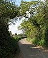 Approaching the village of Briston - geograph.org.uk - 1278104.jpg