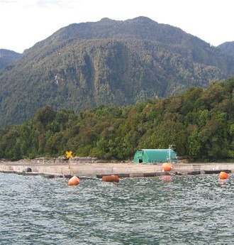 Aquaculture - Aquaculture installations in southern Chile