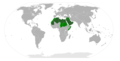 Arabic language in the World.png