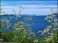 Ardaneaskan, Loch Carron, towards Plockton. - panoramio.jpg