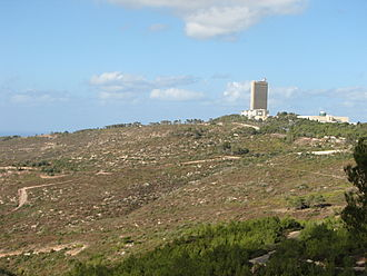 1989 in Israel - The area west of the University of Haifa which burnt up in the 1989 Mount Carmel forest fire. Picture taken in December 2010