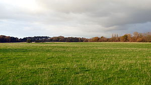 Photo of a large, flat field, surrounded by trees in the far distance.