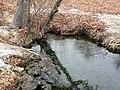 Ash Springs Nevada 3.jpg