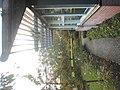 Assen, Netherlands - panoramio (4).jpg