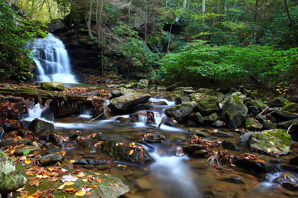 Autumn-creek-waterfalls-leaves - West Virginia - ForestWander.jpg