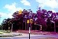 Avenida Racine Vista del lado Sur de La Ciudad de la Costa desde Avenida Giannattasio - panoramio.jpg