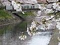 Azumicho, Toyama, Toyama Prefecture 930-0094, Japan - panoramio (5).jpg