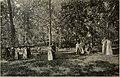 B. S. N. S. quarterly (1916) (14803463283).jpg