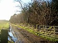 Back road to Ramageton - geograph.org.uk - 308474.jpg