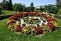 Bad Schönau Blumenuhr.jpg