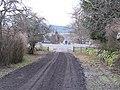 Balavil driveway - geograph.org.uk - 1089660.jpg