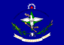 Bandeira-araújos.png