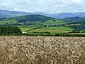 Barley land at Garthbrengy 3 - geograph.org.uk - 926984.jpg