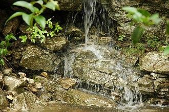 Barton Creek - Image: Barton Creek TX waterfall 1