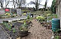 Beith Community Garden, North Ayrshire, Scotland.jpg