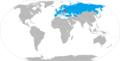 Belavia map.png