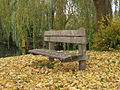 Bench autumn 02.JPG