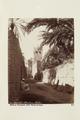 Bild från familjen von Hallwyls resa genom Algeriet och Tunisien, 1889-1890 - Hallwylska museet - 91884.tif